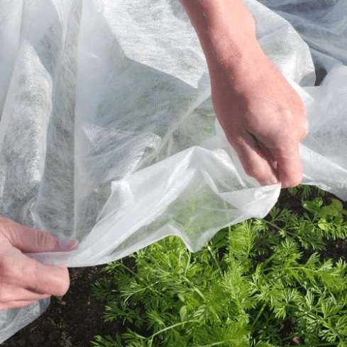 PP Non Woven for Agriculture
