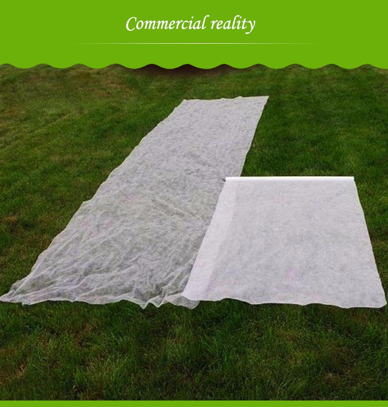 Nanqixing black weed control fabric roll wholesale for fruits-6