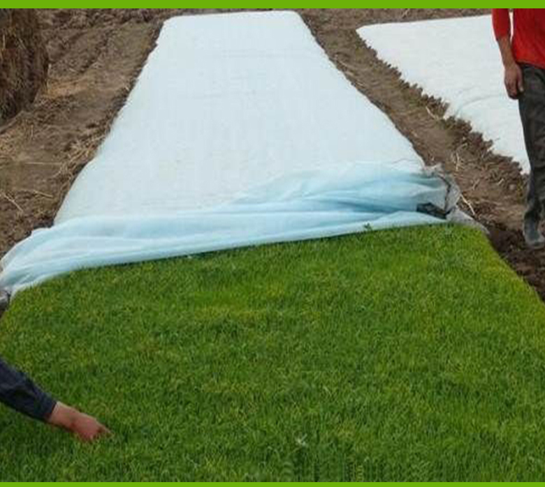 Nanqixing eco-friendly fabric to prevent weeds factory direct supply for crops bags-7