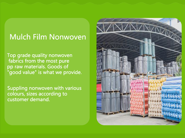 Nanqixing eco-friendly fabric to prevent weeds factory direct supply for crops bags-11