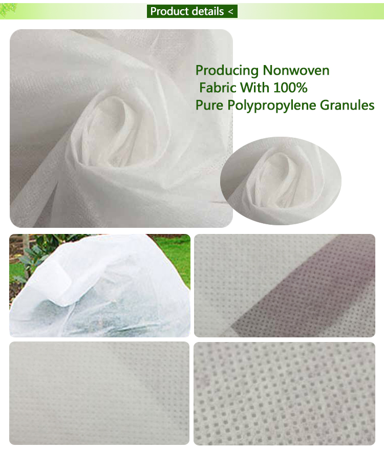 durable green weed control fabric factory for plants-14
