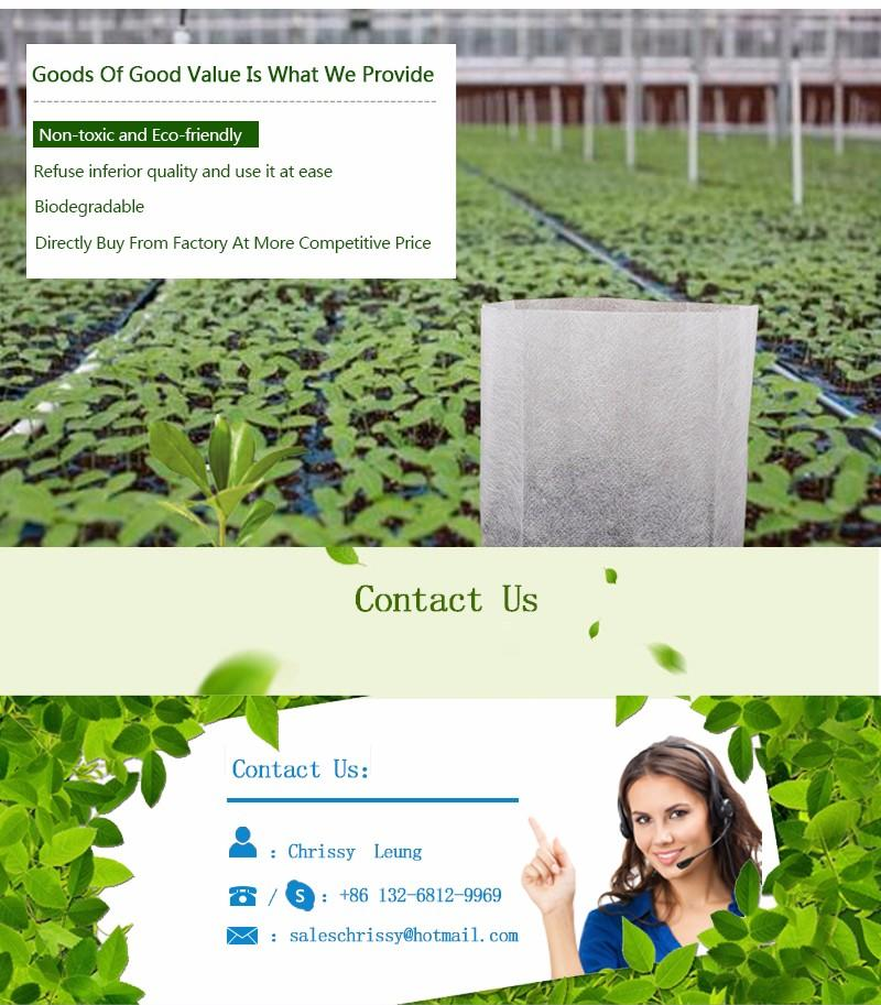 Hot best price weed control fabric greenhouse bags spunbond Nanqixing Brand