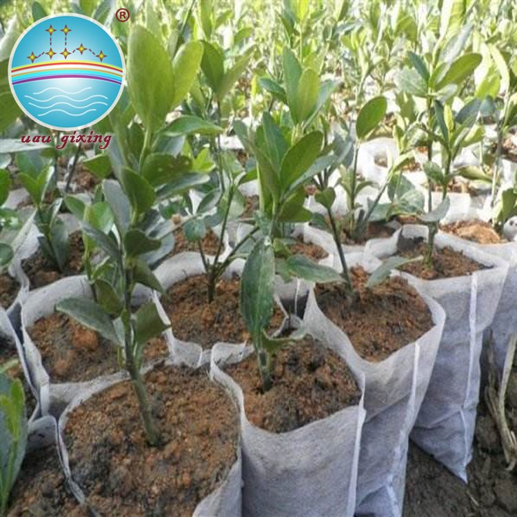 Nanqixing Anti-UV Durable Pp Nonwoven Fabric For Agriculture Plant Cover Nonwoven For Agriculture image25