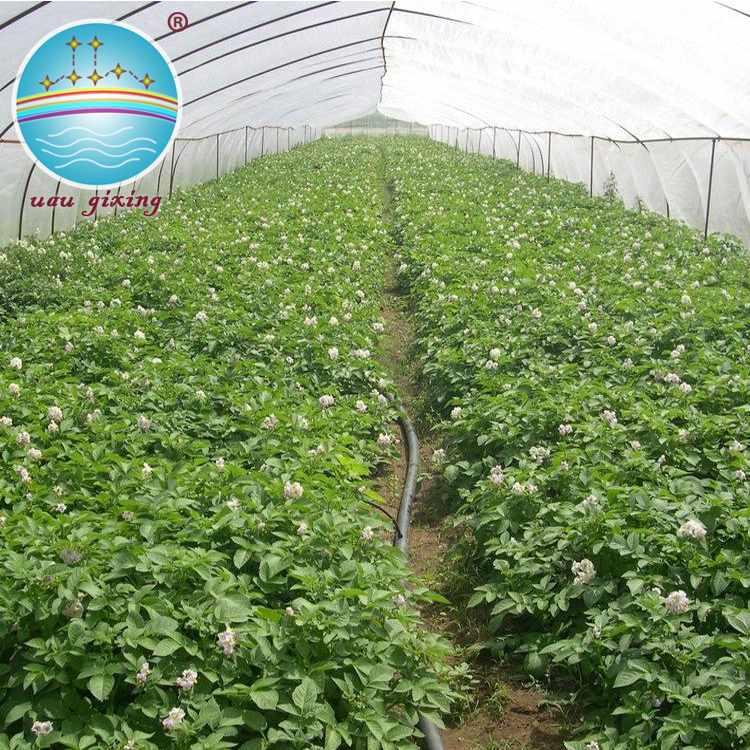 Nonwoven Fabric for Greenhouse Cover with Anti-UV treated