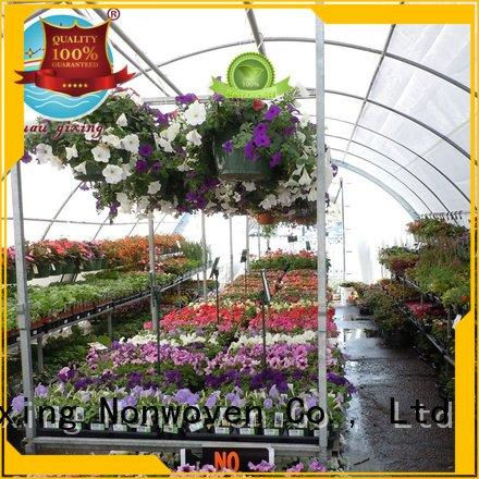 Nanqixing black pp nonwoven best price weed control fabric weed