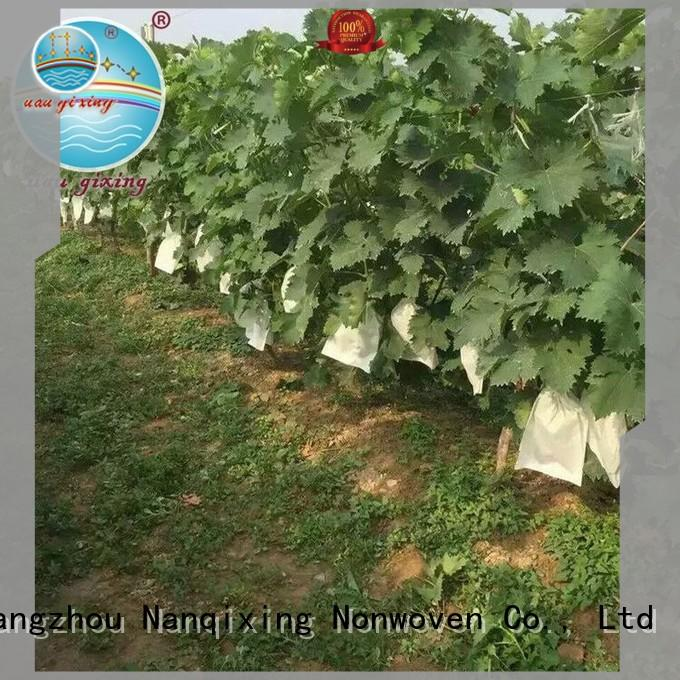 eco-friendly black weed control fabric factory price for plants