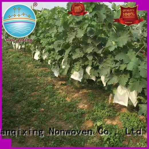 Nanqixing best price weed control fabric fabric plant black friuts